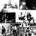 vengeance incorporated predator band photos